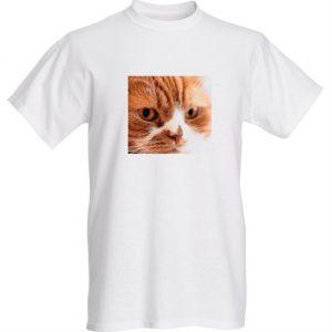 オリジナルポッキーTシャツ